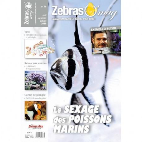 Zebrasomag n°45