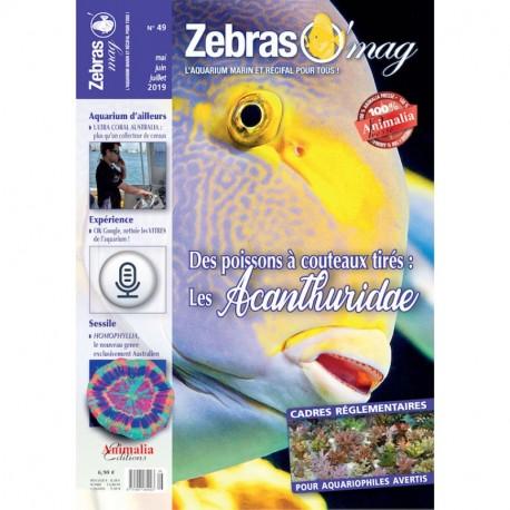Zebrasomag n°48