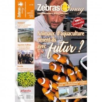 Zebrasomag n°49