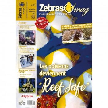 Zebrasomag n°50
