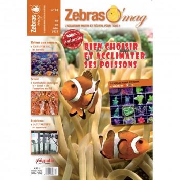 Zebrasomag n°52
