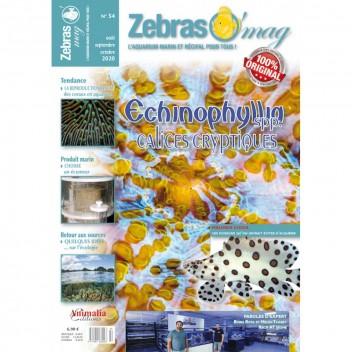 Zebrasomag n°53