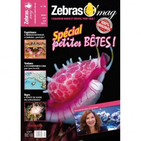 Zebrasomag n°55