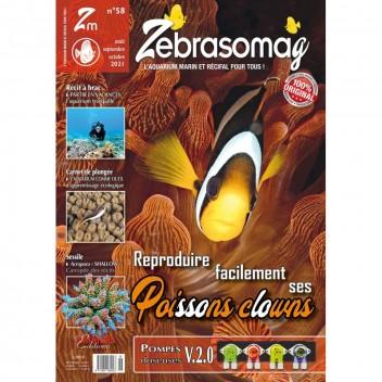 Zebrasomag n°58